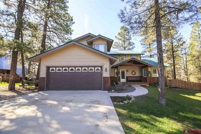 Pagosa Springs Single Family Home For Sale: 326 Dutton Drive