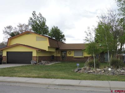 Alamosa Single Family Home For Sale: 510 Brown Avenue