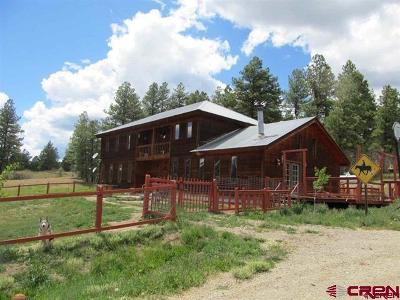 La Plata County Single Family Home For Sale: 47807 Us Hwy 160