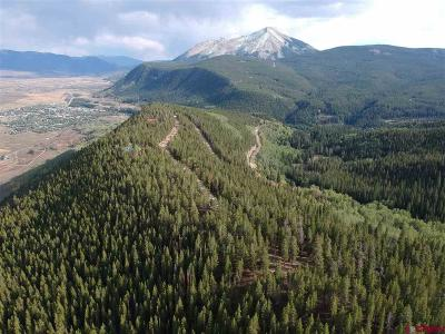 Crested Butte Residential Lots & Land For Sale: 2890 Trappers Way
