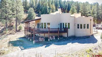 Pagosa Springs Single Family Home For Sale: 231 Tiffany