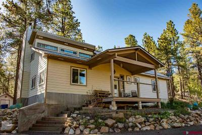Pagosa Springs Single Family Home For Sale: 106 Evergreen Dr.