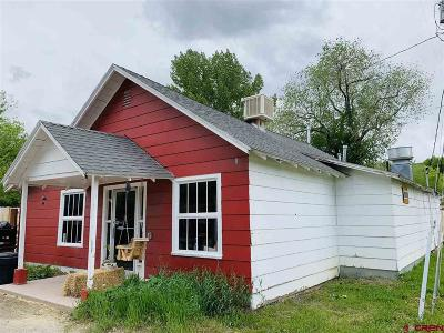 Single Family Home For Sale: 1215 2nd Avenue