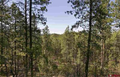 Durango Residential Lots & Land For Sale: 389 Edgemont Highlands Boulevard