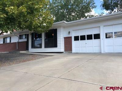 Montrose Single Family Home For Sale: 1347 Manchester Drive