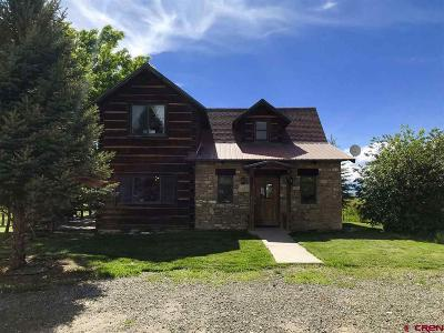 Crawford, Hotchkiss, Paonia Single Family Home For Sale: 38578 92 Highway