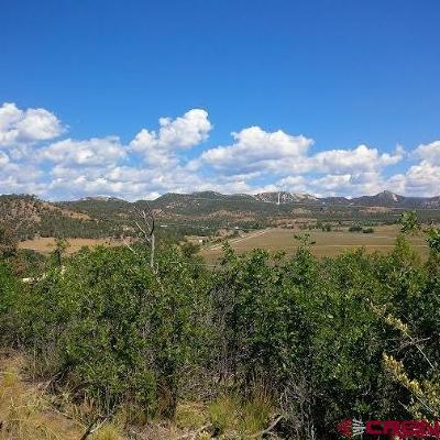 Durango Residential Lots & Land For Sale: 174 Cr 232