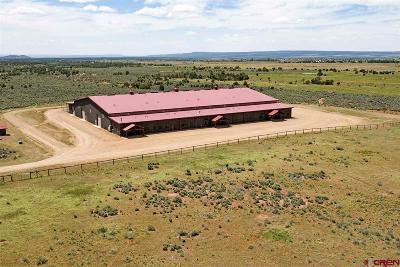 La Plata County Farm For Sale: 256 Rancho Milagro Way