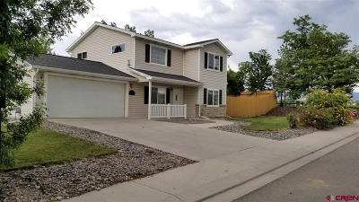 Montrose Single Family Home UC/Contingent/Call LB: 1125 Deer Trail Road