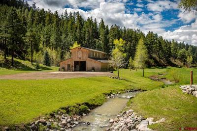 Pagosa Springs Single Family Home For Sale: 2973 County Road 326