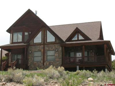 South Fork CO Single Family Home For Sale: $517,000