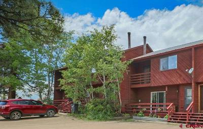 Pagosa Springs Condo/Townhouse UC/Contingent/Call LB: 409 E Golf Place