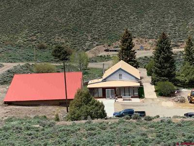 Gunnison Single Family Home For Sale: 31321 State Highway 149