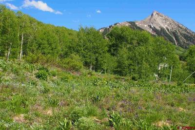 Residential Lots & Land For Sale: 55 Cinnamon Mountain Road