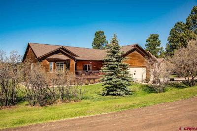 Pagosa Springs Single Family Home For Sale: 306 Escobar