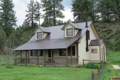 Pagosa Springs Single Family Home UC/Contingent/Call LB: 227 E Stollsteimer Road