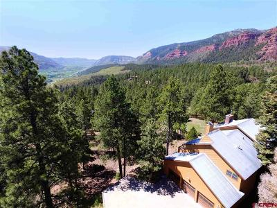 Durango Single Family Home For Sale: 115 Skyline Drive