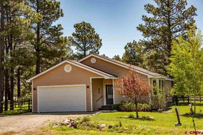 Pagosa Springs Single Family Home For Sale: 37 Quartz Court