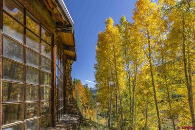 Crested Butte Single Family Home For Sale: 665 Nicholson Lake Ridge Road