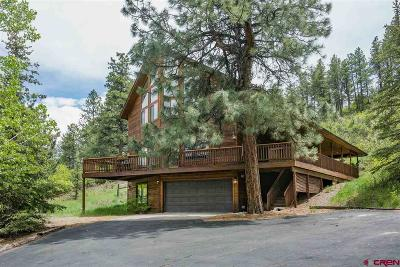 La Plata County Single Family Home For Sale: 234 Iron King