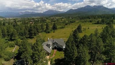 Pagosa Springs Single Family Home For Sale: 256 Jacobson Circle