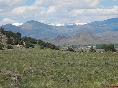 Del Norte Farm For Sale: Pronghorn Trail