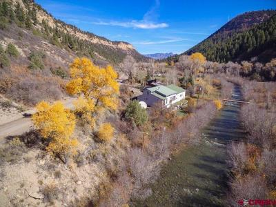 Pagosa Springs Single Family Home For Sale: 3330 County Road 391