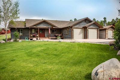 Pagosa Springs Single Family Home For Sale: 40 Par Place
