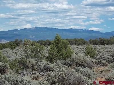 Montrose Residential Lots & Land For Sale: 4 Happy Canyon Road