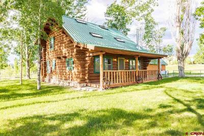 Montrose Single Family Home UC/Contingent/Call LB: 21770 Uncompahgre Rd