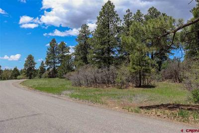 Durango Residential Lots & Land For Sale: Ridge Road