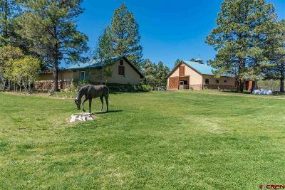 Pagosa Springs Single Family Home For Sale: 1441 Buttress Avenue