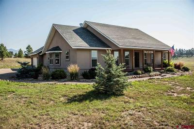 Pagosa Springs Single Family Home For Sale: 109 Saddle Circle