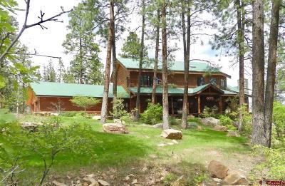 La Plata County Single Family Home For Sale: 364 Nusbaum Road