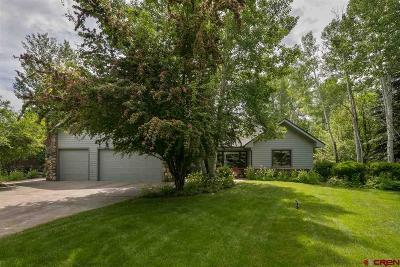 La Plata County Single Family Home UC/Contingent/Call LB: 186 Blue Sky Drive