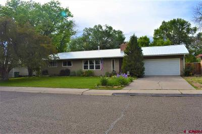 Montrose Single Family Home For Sale: 11 Aspen Street