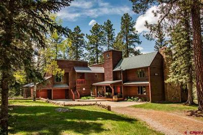 Pagosa Springs Single Family Home For Sale: 701 Nohuntum Place