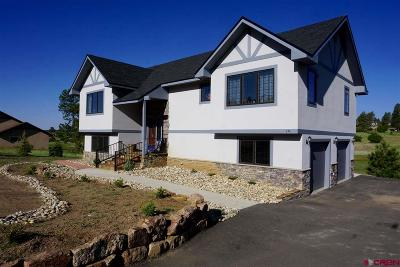 Pagosa Springs Single Family Home For Sale: 238 Dylan