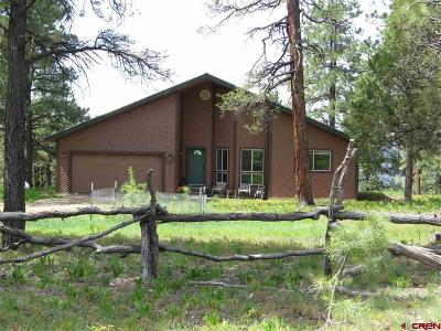 Pagosa Springs Single Family Home For Sale: 94 Magic Meadow Court