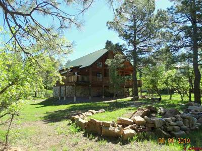 Pagosa Springs Single Family Home UC/Contingent/Call LB: 389 Caddy Circle