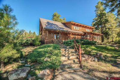Pagosa Springs Single Family Home For Sale: 206 Granada Drive