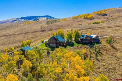Gunnison County Single Family Home For Sale: 590 Red Mountain Road
