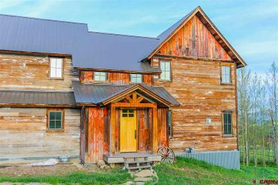 Crested Butte Single Family Home For Sale: 10 Judd Falls Circle