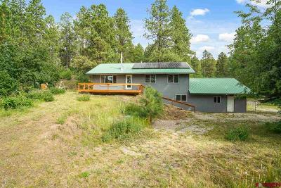 La Plata County Single Family Home For Sale: 344 Groves Drive