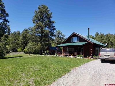 Pagosa Springs Single Family Home For Sale: 67 Elbert Place