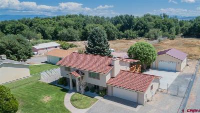 Delta Single Family Home For Sale: 2600 Ridge Road
