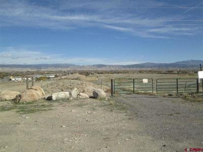 Montrose Residential Lots & Land For Sale: 2401 6485 Road