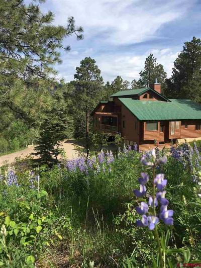 Durango Single Family Home For Sale: 89 Sunset Lane