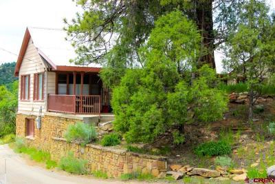 Durango, Bayfield, Cortez, Telluride Commercial For Sale: 3500 N Main Avenue