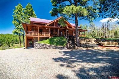 Pagosa Springs Single Family Home For Sale: 246 Solitude Place